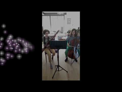 Vidéo - Du rire aux larmes - duo violoncelle et basson
