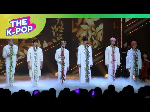 ASTRO, BLOOM [THE SHOW, FanCam, 190122] 60P