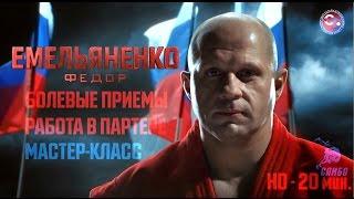 Федор Емельяненко болевые приемы - работа в партере