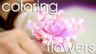 How to Apply Dust Color to Gum Paste Flowers