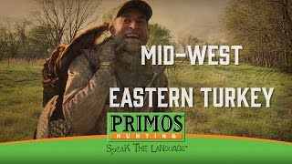 MID WEST EASTERN TURKEYS
