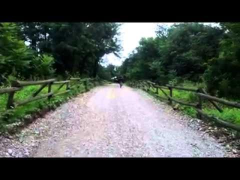 L'antica strada del Mulino di Tinella a Lonate Pozzolo