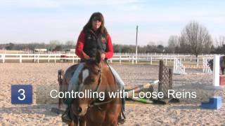 How to Train a Western Pleasure Horse