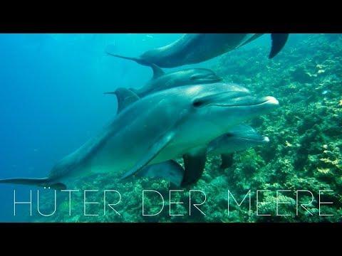 SEOM - Hüter der Meere