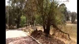 preview picture of video 'AYAPANGO EDO. DE MEXICO PARQUE ECOTURISTICO MUNICIPAL'