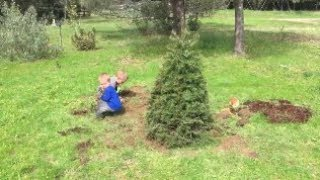 Planting our XMAS Tree in the yard