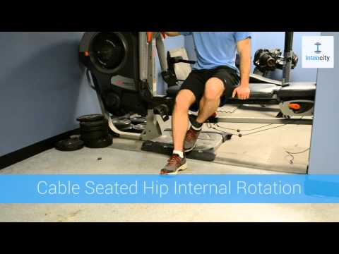 Intencity.fit - Cable Seated Hip Internal Rotation