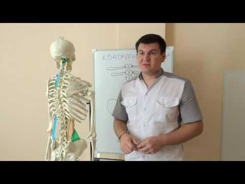 Сауны при лечении остеохондроза