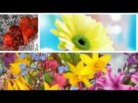 Поздравление Любе (Любовь, Любочке). Красивая видео открытка.