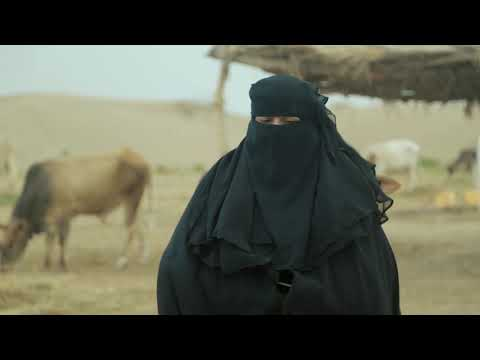 ERRY - Strengthening the resilience of the Yemeni agricultural and livestock sectors