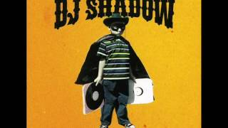 Dj Shadow - Artifact