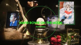 "七尾旅人 ""DAVID BOWIE ON THE MOON"" (Music Video Edit)"