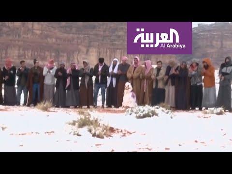 العرب اليوم - شاهد: متنزهون يرقصون