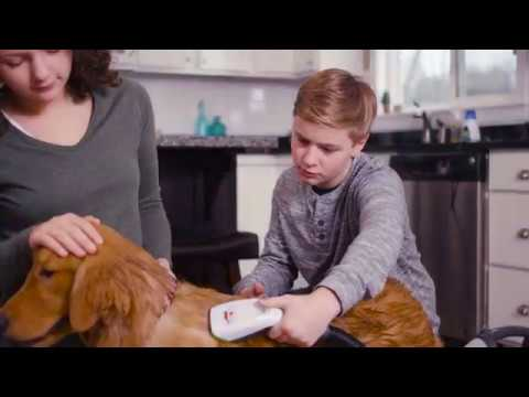 BARKBATH™ The Faster, Easier, Less Messy way to bathe your dog Video
