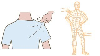 i運動達人會客室-認識筋膜