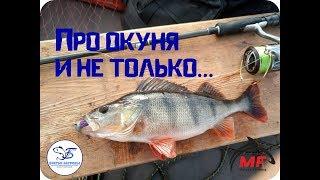 Рыбалка на рыбинском водохранилище заповедный край