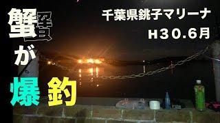 H30.6月釣行千葉県銚子マリーナカニが爆釣した!