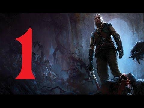 The Witcher Прохождение Серия 1 (Начало)