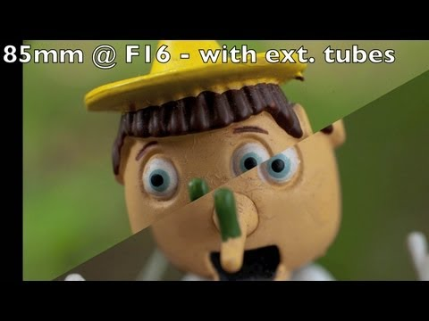 Extension tubes vs Macro lens