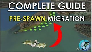 Easy Guide to Pre-Spawn Bass Fishing | Best Spring Fishing Areas