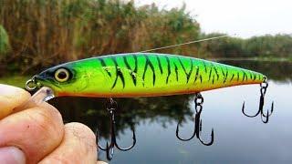 Рыбалка на щуку в полтавской области сентябрь