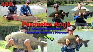 Pescaria e Soltura de peixes no Arujá - Fishingtur na TV 483
