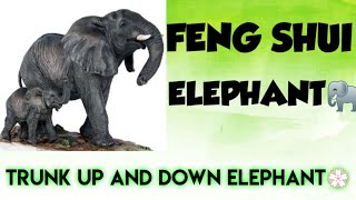 Feng Shui Elephant -Facing Direction -Benefits Of Keeping An Elephant Figurine In The House