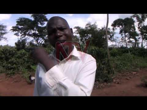 EBY'OBULIMI E BAMUNAANIKA: Waliwo abeekokkodde eddagala effu