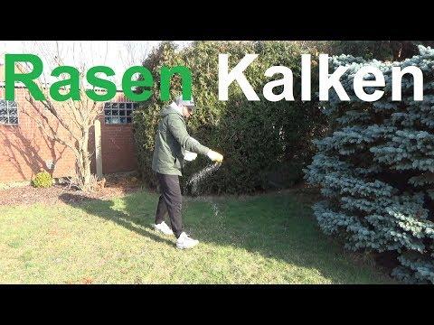 Rasen kalken - Warum und wann Rasen kalken - Rasenkalk Kalk für den Rasen