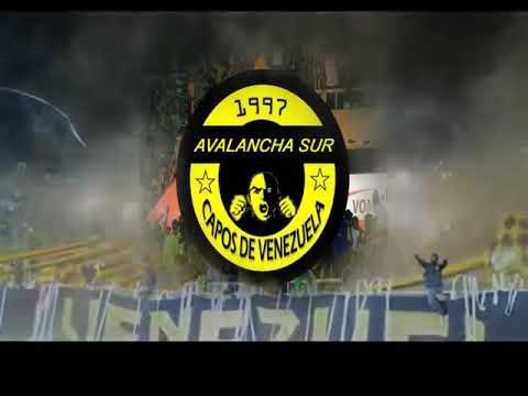 """HOY TE VENIMOS A VER //CÁNTICOS AURINEGROS// AVALANCHA SUR 1997 // CAPOS DE VENEZUELA"" Barra: Avalancha Sur • Club: Deportivo Táchira • País: Venezuela"