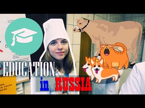 Video EDUCATION IN RUSSIA for foreigners | STUDYING in RUSSIA - WHAT YOU NEED TO KNOW? Высшее образование