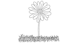 How to draw a Daisy - Easy step-by-step drawing lessons for kids