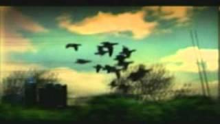 aceyalone-moonlight skies ft.goapele