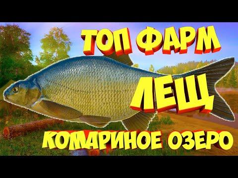 Лещ озеро Комариное