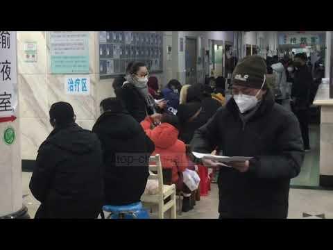 Papillomavirus infection urinaire