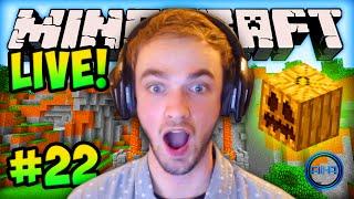 """MINECRAFT (How To Minecraft) - w/ Ali-A #22 - """"LIVE STREAM!"""""""