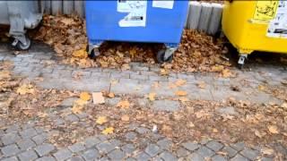 Video Kolona-Volby 2013