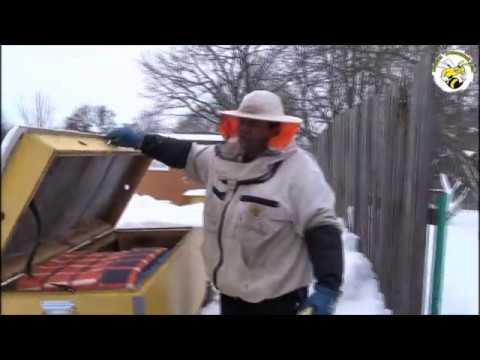 ЗИМНЯЯ ПОДКОРМКА ПЧЁЛ КАНДИ. ПРОСТО  И БЫСТРО  (WINTER FEEDING OF BEES)
