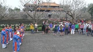 Tin Tức 24h: Cây làm giàu của người nông dân Xuân Vân, Tuyên Quang