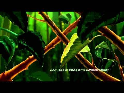 Kurt Cobain: Montage of Heck Clip 3