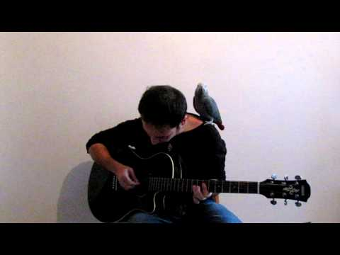 Coldplay - Up With The Birds (cover) (waiting for A Head Full Of Dreams)