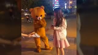 Gấu lầy phát tờ rơi - Tik Tok Trung Quốc