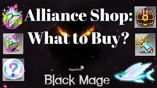 The Black Mage Shop: What to Buy? [Text Version Available]