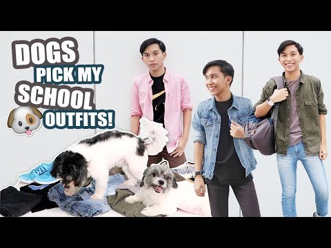 My DOGS Pick My School Outfits! (Philippines) | Maverick Del Mundo