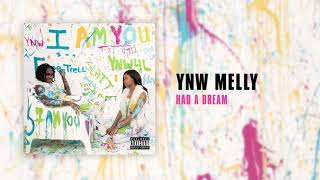 YNW Melly - Had A Dream [Official Audio]