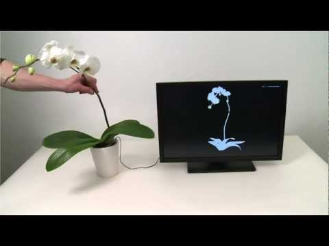 Up Next In Motion Control: Plant-Fondling