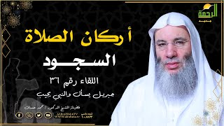 أركان الصلاة السجود برنامج جبريل يسأل مع فضيلة الشيخ الدكتور محمد حسان