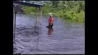 preview picture of video 'Sights of the Flooding Delta'