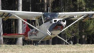 Cessna L-19 Bird Dog Takeoff At Airfield Rostock | N33455