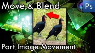 Photoshop Tutorial - How To Move Part of An Image (Content Aware Move Tool Photo Editing)